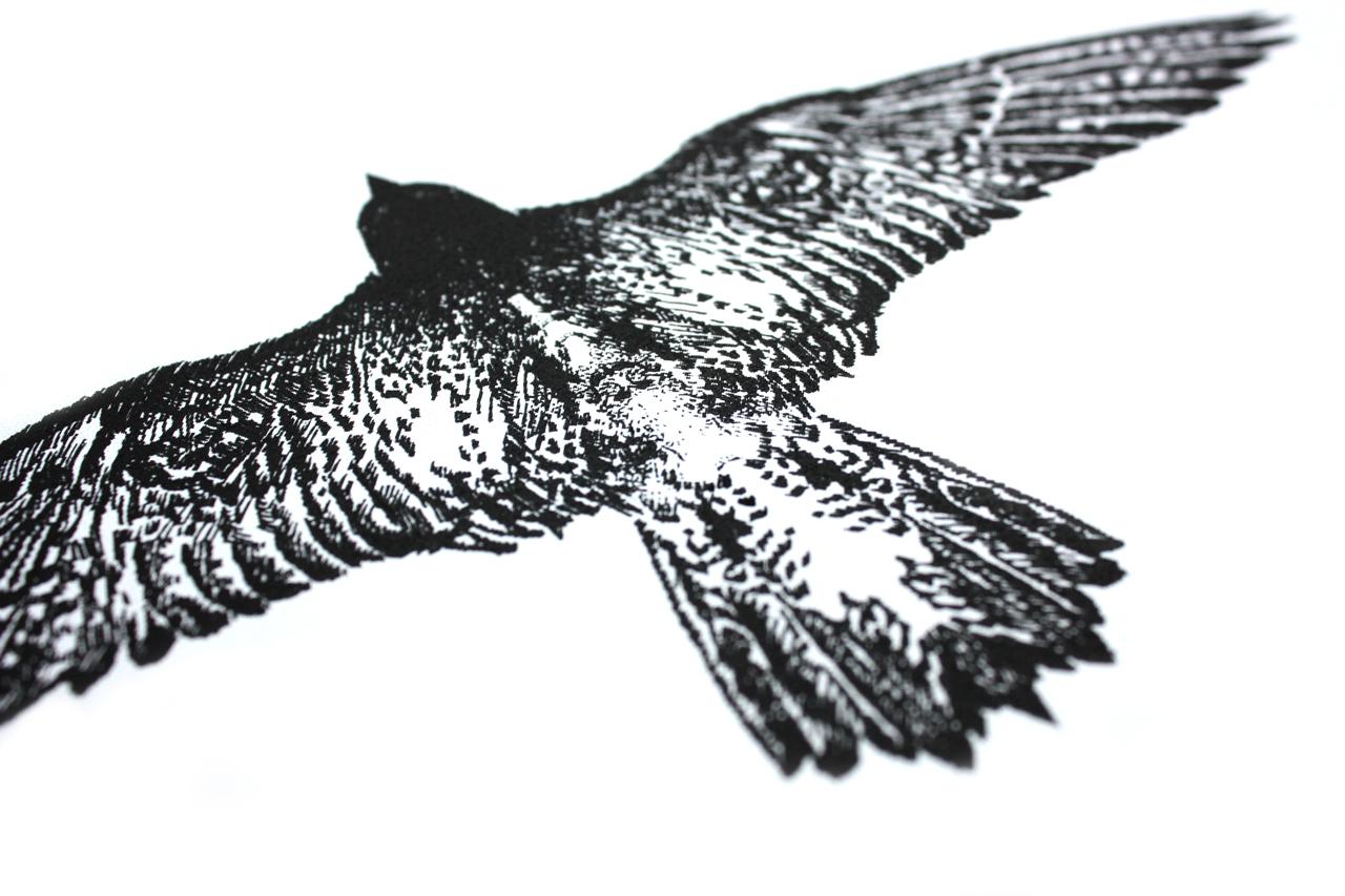 Illustratie torenvalk – Studio Mooijman en Mittelberg, Grafisch ontwerpbureau, Den Haag