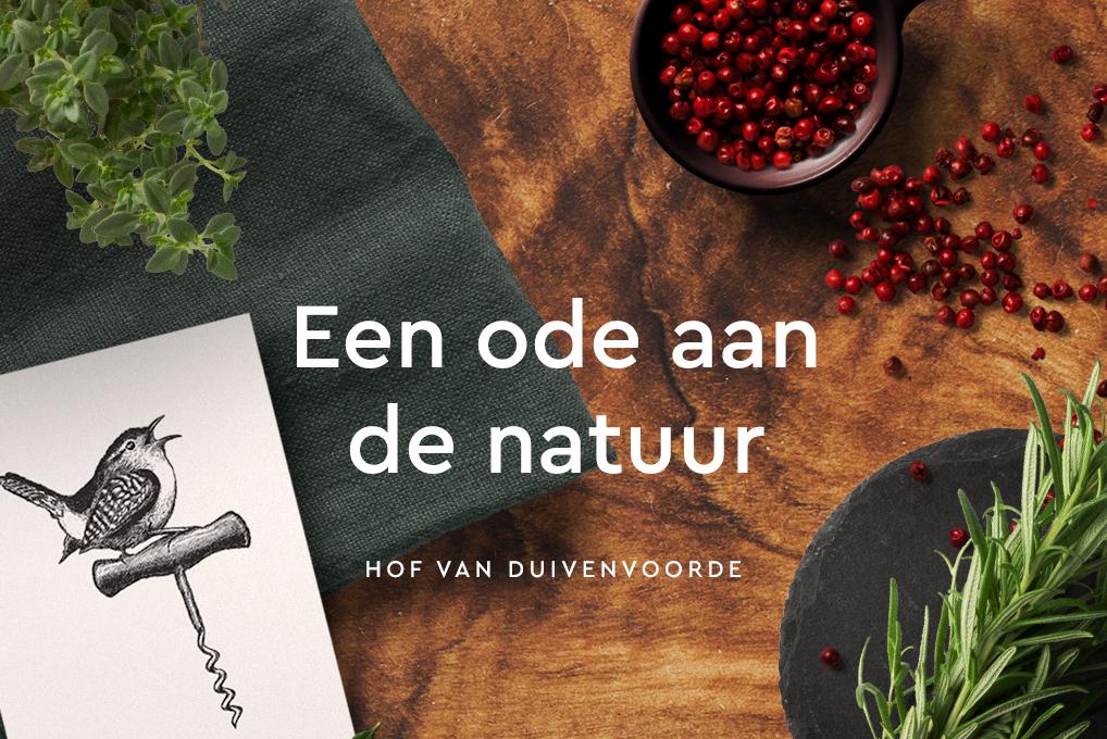 Hof van Duivenvoorde – Studio Mooijman en Mittelberg, Grafisch ontwerpbureau, Den Haag