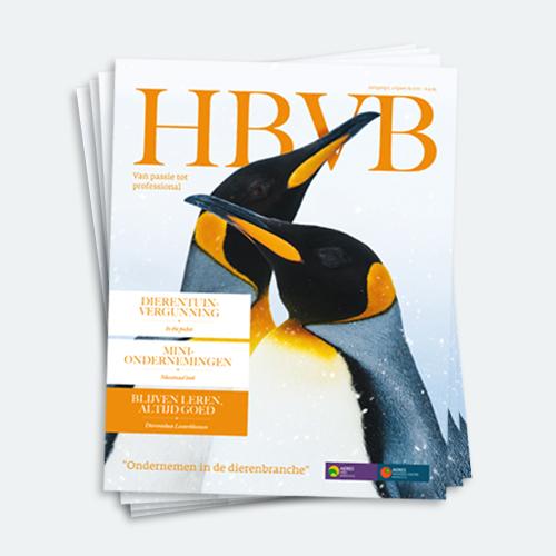 HBVB Magazine