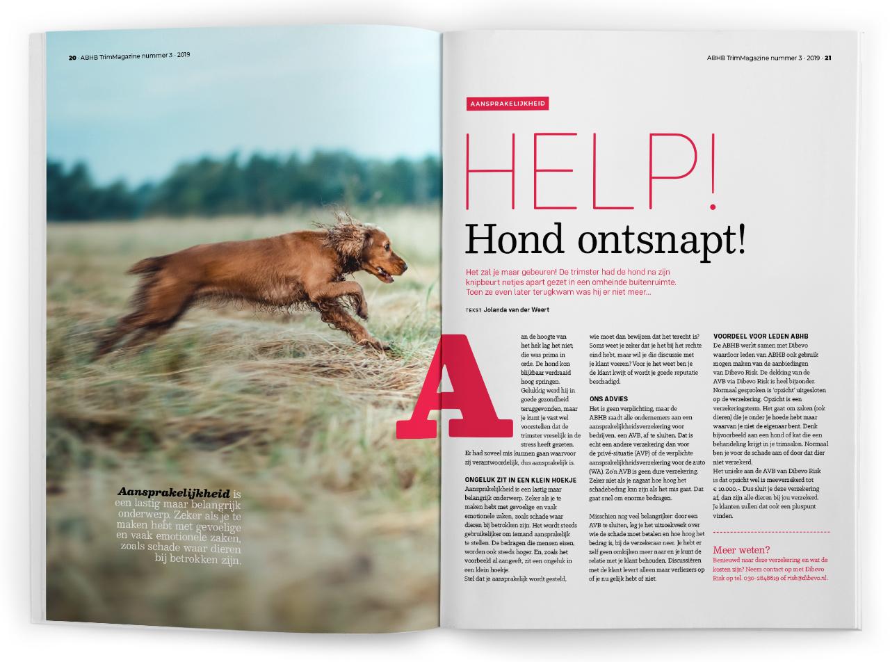 Trim Magazine, ABHB, Magazine ontwerp, Studio Mooijman en Mittelberg